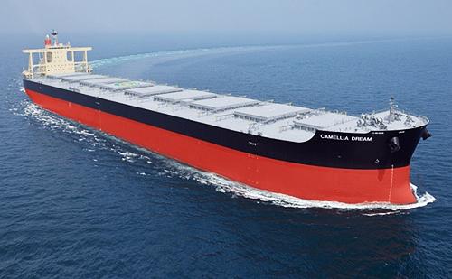 NSafe®-Hull採用船と同型船(株式会社商船三井提供)